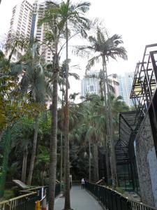 HK botanical garden