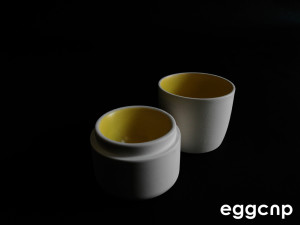 egg cnp