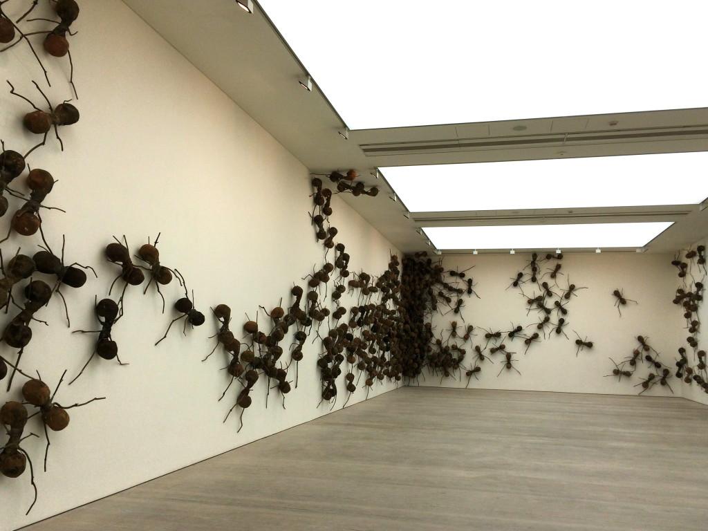 Rafael Gómezbarros's ant installation