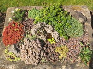 myddelton house garden