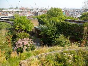 kenisngton roof garden