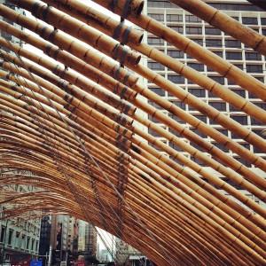 hong kong bamboo