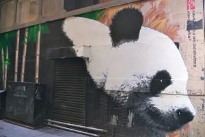 Giant panda by Klingatron