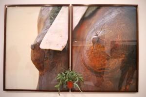 Damian Ortega at Galeria Fortes Vilaca