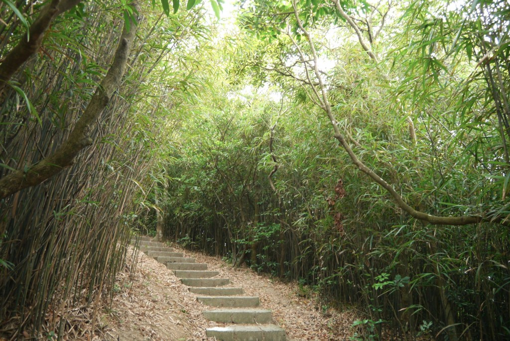 lung fu shan trail