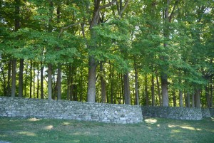 andy goldsworthy storm king wall