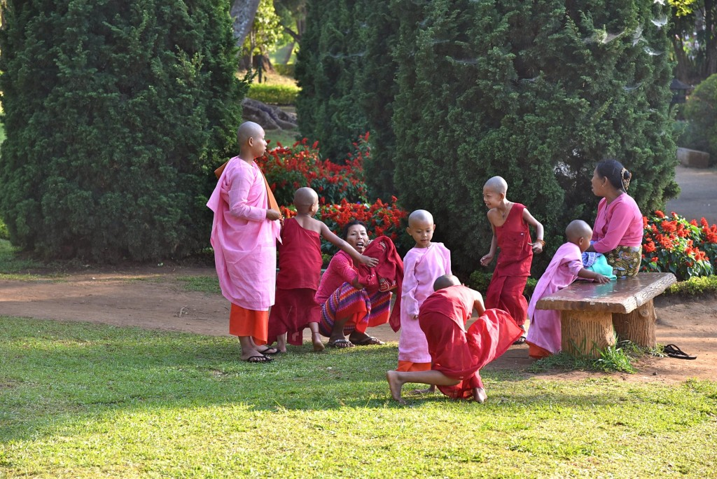 burmese monks and nuns