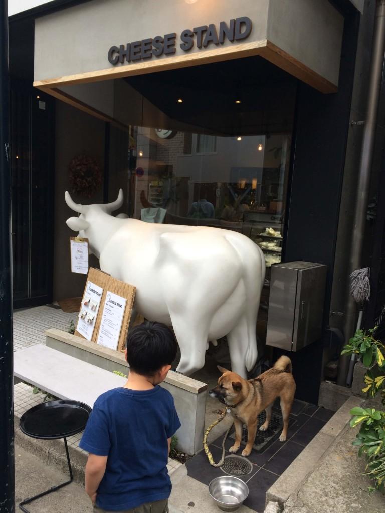 Tomigaya cheese stand